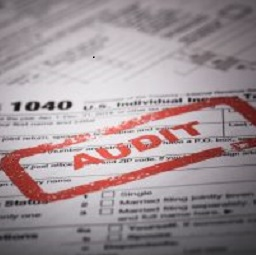 What Can You Do to Avoid an Audit?
